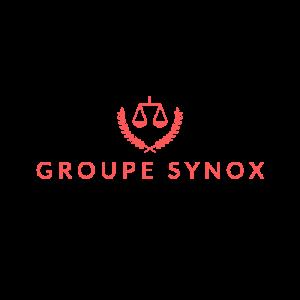 Groupe synox-logo